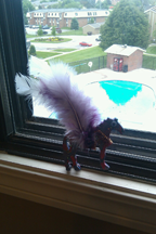 Sparkle Pony saying goodbye to the pool at our Omaha apartment.