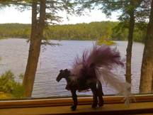 Sparkle Pony in Western Massachusetts.